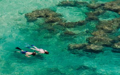12 Ways to be a Sustainable Hawai'i Tourist